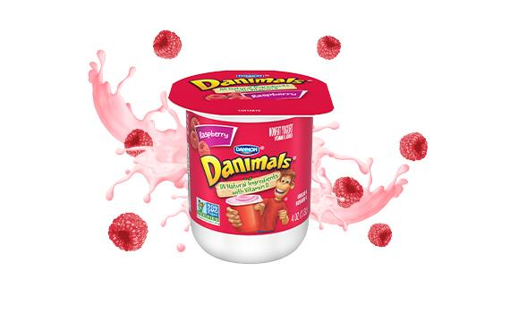 Raspberry Kids Nonfat Yogurt